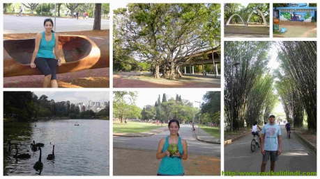 ibirapuerapark_sundaywalk
